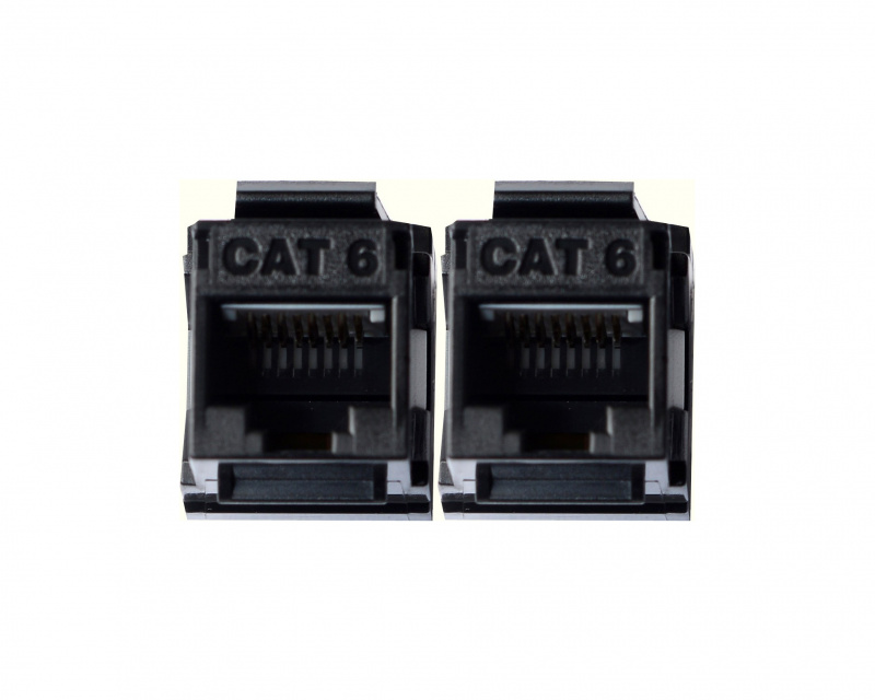 Cat. 6 | Katy Paty